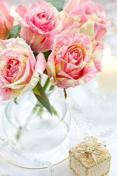 Strikingly beautiful pink and cream striped roses