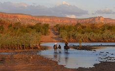 In the saddle at Home Valley Station on the Gibb River Road. Australia Day, Western Australia, Australia Travel, Australian Photography, Hill Station, The Ranch, Adventure Travel, Monument Valley, Scenery