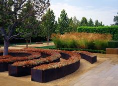 Cerritos Sculpture Garden   Civic, Cultural + Institutional   Work   LRM Ltd.