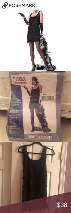 Flapper Girl Halloween Costume S Worn once last year. Super cute, new condition! Comes with Flapper dress and the feather sequin headband. Let me know if you have any questions :) California Costumes  Other