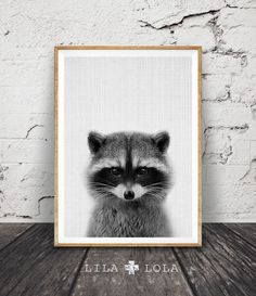 Racoon Print, Woodlands Animal, Nursery Decor, Wall Art, Kids Room, Forest Animal, Black and White Printable Instant Download, Woodlands Art by LILAxLOLA on Etsy https://www.etsy.com/au/listing/271185210/racoon-print-woodlands-animal-nursery