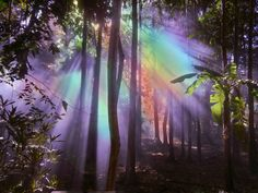 A fun image sharing community. Explore amazing art and photography and share your own visual inspiration! Estilo Tropical, Fairy Land, Psychedelic Art, Fantasy World, New Wall, Faeries, Pretty Pictures, Trippy, Aesthetic Pictures