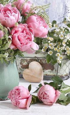 Beautiful Flower Arrangements, Amazing Flowers, Beautiful Roses, Pretty Flowers, Fresh Flowers, Pink Flowers, Floral Arrangements, Blue Peonies, Peony Flower
