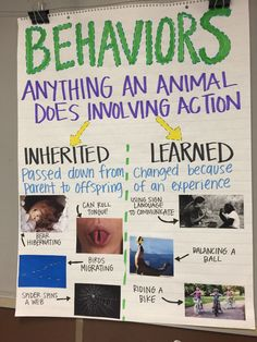 Inherited Traits/ Behaviors Anchor Chart - New Sites Science Anchor Charts 5th Grade, 7th Grade Science, Middle School Science, Elementary Science, Science Classroom, Teaching Science, Science Education, Life Science, Fourth Grade Science Projects