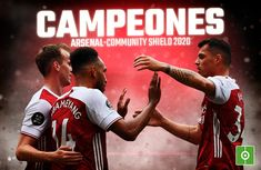 Arsenal, Sumo, Wrestling, Sports, Champs, Lucha Libre, Hs Sports, Sport