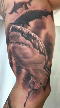 Great White Shark // Jhon Gutti // Outer Limits Longbeach CA