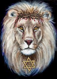 Lion of Judah Star of David prophetic art.