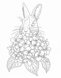Harmony Of Nature Adult Coloring Book Pg 36