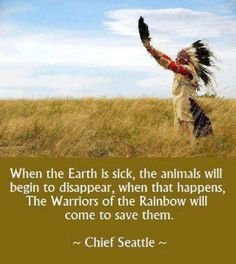 I think that is what we are seeing at Standing Rock Native American Prayers, Native American Spirituality, Native American Pictures, Native American Symbols, Native American History, American Indians, American Indian Quotes, American Women, Native Quotes