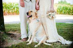 Wedding with a sweet couple & sweet dog! :)