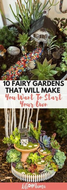 Fairy gardens are so popular right now, and it's because they're so cute! Check out these 10 designs and then start creating your own. #fairygarden