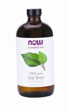 Amazon.com: NOW Foods Melaleuca Tea Tree Oil 4 oz: $17.99 16 oz. = $44.52 FREE S/H