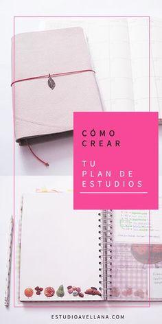 Ideas de organización para estudiar
