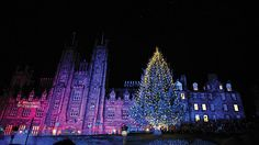 The 20 Most Beautiful Christmas Trees in the World includes Edinburgh! The Norwegian Christmas tree at the Mound. Comes from the home of Christmas trees, Norway and it's all thanks to our friends at Hordaland County Council. Their gift marks Edinburgh's historic and cultural links with Norway since the Second World War.