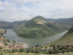 Alijó - Enjoy your holidays in Portugal, Douro Valley, Douro River Douro Portugal, Portugal Holidays, Douro Valley, Port Wine, Five Star Hotel, Cruise, To Go, River, Explore