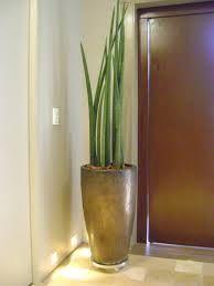 vaso grande na entrada de casa - Pesquisa Google