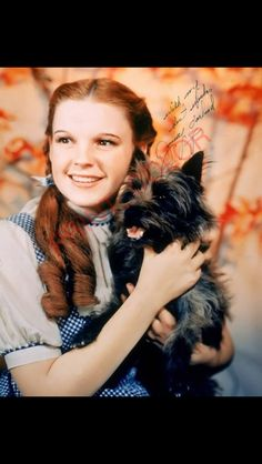 Dorothy toto wizard of oz