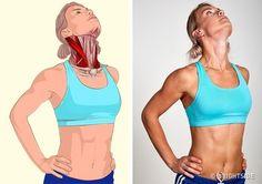 Related muscles: Sternocleidomastoid muscle (located on both sides of the neck). - İlgili kaslar: Sternokleidomastoid (Boynun her iki tarafınfa bulunan) kas. Related muscles: Sternocleidomastoid muscle (located on both sides o. Wellness Fitness, Yoga Fitness, Health Fitness, Muscle Stretches, Stretching Exercises, Massage Dos, Sternocleidomastoid Muscle, Psoas Release, Fitness Bodybuilding