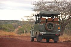 Join an Ubizane Game Drive today to see our wonderful reserve with Giraffe, Zebra, White Rhino, Blue Wildebeest and a variety of plains game and birdlife Blue Wildebeest, In And Out Movie, Out Of Africa, African Safari, Go Camping, Dream Vacations, My Dream, South Africa, Travel