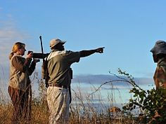 Walking safaris in the Kruger National Park of South Africa with Great Limpopo Wilderness Camps & Trails. Camp Trails, Hiking Trails, Wilderness Trail, Kruger National Park, Adventure Activities, Game Reserve, Camps, South Africa, Safari