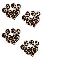 amazing cheatah print paws......:)
