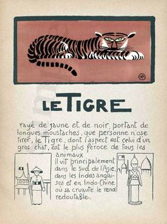 Tiger - Le Tigre - Vintage French   Print - 11 x 17 inches. $22.00, via Etsy.