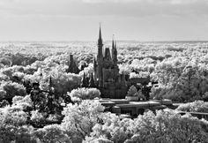 Let it Snow  photographer: Tom Bricker    location: Magic Kingdom Park #DisneyParksPhotoProject