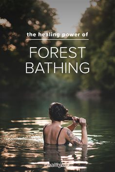 Forest Bathing, or Shinrin-Yoku: Meditation, Stress Benefits, and More