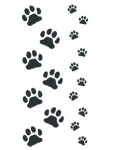 cat and kitten paws temporary tattoo