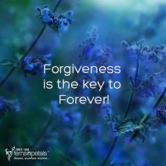 Say yes if you agree! http://www.fnp.ae/ #fernsnpetalsUAE #forever #forgiveness