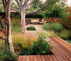 I'd like a slightly overgrown backyard if I had some wooden paths around it.