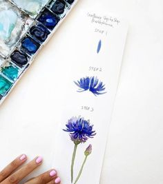 flower-drawing-step-step-by-instructions-three-steps-colored watercolor-blue - Aquarell malen - Watercolor Flowers Tutorial, Easy Watercolor, Watercolour Tutorials, Watercolor Techniques, Watercolor Cards, Flower Tutorial, Watercolor Paintings, Watercolors, Step By Step Watercolor