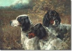 In some of the world's greatest galleries and private collections hang paintings of upland game, wild fowl, big-game and gun-dogs with but three words that Dog Paintings, Portrait Paintings, Irish Setter, Vintage Dog, Hunting Dogs, Wildlife Art, Beautiful Dogs, All Dogs, Dog Art