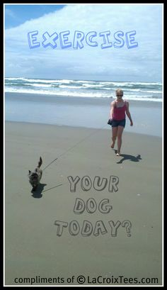 EXERCISE...Your Dog Today? This is my favorite exercise :)