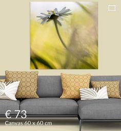 Reaching for the sun van Elly van Veen op canvas, behang en meer Outdoor Sofa, Outdoor Furniture, Outdoor Decor, Canvas, Home Decor, Art, Tela, Art Background, Decoration Home