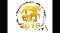 Retrouvez notre marche mondiale pour les animaux sauvages de 2016 avec notre marraine Adriana Karembeu et Xavier Foupa Pokam  un grand merci à notre réalisateur Stephen Paradisi et un grand merci aux assos qui nous avaient retrouvé. Merci à tous  fred