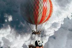 L'art du hand lettering sur les vitrines by Ashley Willerton Wakefield, Photomontage, Image Lion, Yulia Brodskaya, Image Princesse Disney, Photoshop, Illustrations, Hand Lettering, Portrait