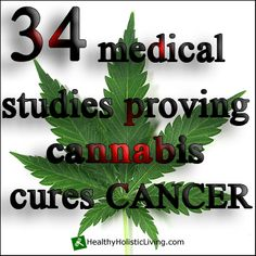 There's still a lot of confusion across the nation about whether or not marijuana is effective for cancer patients. To clear up any misinformation this is a list of 34 medical studies proving cannabis cures cancer
