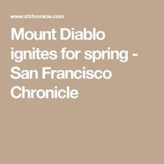 Mount Diablo ignites for spring - San Francisco Chronicle
