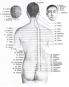 ● Méridien de la Vessie - Bien être, santé, relaxation, massage, stress, shiatsu, Qi Qong; phytothérapie, remède de grand-mère Technique Massage, Point Acupuncture, Shiatsu, Body Organs, Traditional Chinese Medicine, Pressure Points, Qigong, Alternative Medicine, Ayurveda