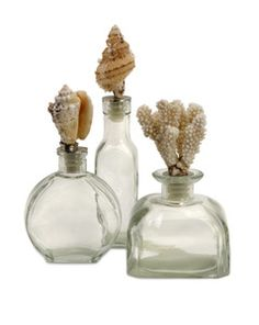 This set of three glass bottles with real shell toppers, will look great when filled with sand or bath salts. Add this set to your collection of sea inspired accents!