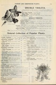 Dreer's garden calendar : 1899 : Henry A. Dreer (Firm) : Free Download, Borrow, and Streaming : Internet Archive The Borrowers, Calendar, Archive, Clip Art, Internet, Garden, Free, Vintage, Garten