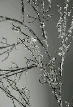 Crystal branches