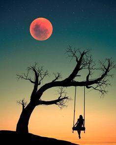 Ideas silhouette art painting the moon Beautiful Nature Wallpaper, Beautiful Moon, Nature Artwork, Art Nature, Bird Artwork, Artwork Ideas, Painting Wallpaper, Painting Art, Paintings