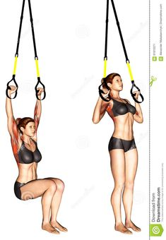 Photo about Suspender Self assisted Pull-up. Exercising for bodybuilding Target muscles are marked in red. Illustration of assisted, marked, split - 91910371