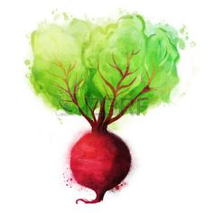 Beetroot Stock Illustrations, Cliparts And Royalty Free Beetroot ...