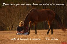 """""""Sometimes you will never know the value of a moment until it becomes a memory."""" - Dr. Seuss #Horses #HorseQuotes"""