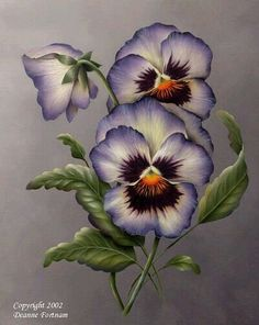 "Excellent Absolutely Free Pansies embroidery Popular Pansies are definitely the multi-colored roses with ""faces."" A cool-weather preferred, pansies are good China Painting, Tole Painting, Fabric Painting, Painting & Drawing, Watercolor Flowers, Watercolor Paintings, One Stroke Painting, Arte Floral, Flower Pictures"