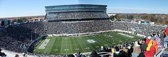 campus, football, gunson, house, linden, michigan state university, minnesota, MSU football, november, panorama, sparty, statue, student house