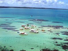 Piscinas Naturais de Maragogi - Alagoas / Brazil